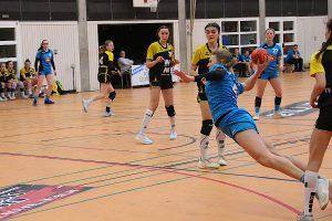 Spielszene aus dem Spiel TV Nellingen vs Hbi Weilimdorf/Feuerbach | Foto: Hbi