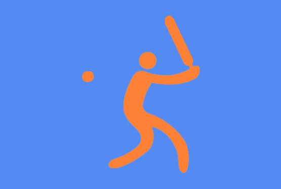"""Der Stuttgarter Cricket Verein (CV) ist vom Deutschen Cricket Bund bei der Hauptversammlung in Kassel als """"Verein des Jahres"""" ausgezeichnet worden. Besonders hervorgehoben wurde dabei das Engagement des Vereins im Jugend - und im Damenbereich."""