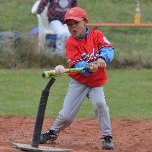 Reds: Eli Jackson schlägt den Baseball vom Tee (Foto: Iris Drobny)